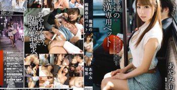 [ABP112] Our Exclusive Molester Pet. Shunka Ayami