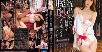 [PGD887] Her Pussy Gets Deeply Penetrated By Irresistible Pleasure… Noa Mizuki